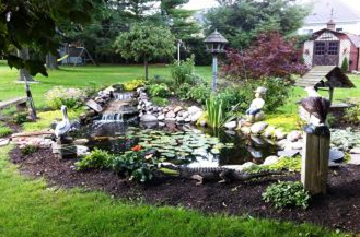 The waterfall within a pond provides oxygen for plants & fish plus helps to keep water clear.