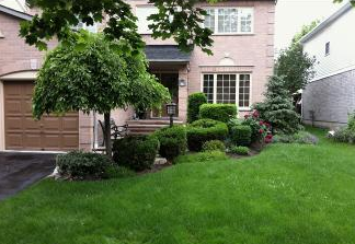 Before - Older steps may settle, older shrubs eventually outgrow their space and look unsightly.